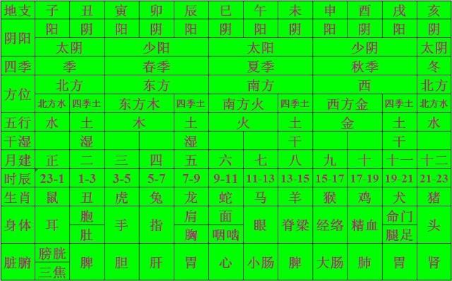 十二地支  五行  四季  脏腑  阴阳(1)